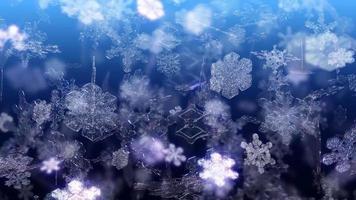 Christmas Snowflakes Falling - Loop video