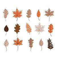 Autumn fallen leaves set. Vector illustration