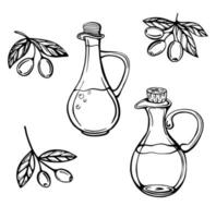 set of olive branches and olive oil bottles vector