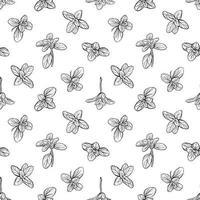 hojas de albahaca de patrones sin fisuras vector