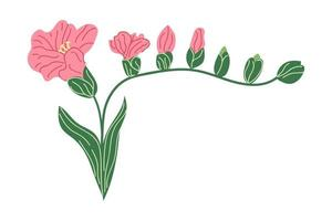 Hand drawn Freesia flower. Flat illustration. vector