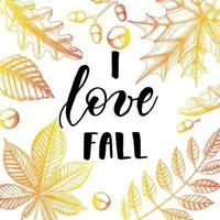 Autumn lettering calligraphy phrase - I love fall. vector