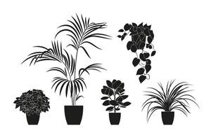 Collection silhouettes of houseplants in black color. vector