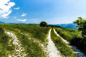 Paths on a green hill photo