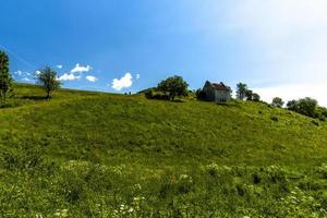 Green hill and blue sky photo