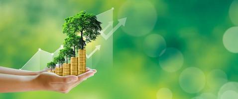 Empresario mano sujetando el paso de pilas de monedas con árboles que crecen en la parte superior foto