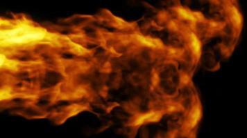 ameixa de fogo sobre um fundo preto video