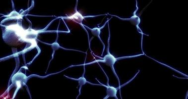 Blue Neuron synapse network with red electric impulse activity able to loop seamless video