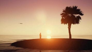 silhouette araba di dishdasha tramonto uomo arabo con uccello sulle sabbie del deserto e sull'oceano video