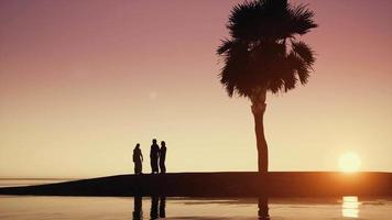 araba dishdasha tramonto silhouette la gente araba parla ocean video