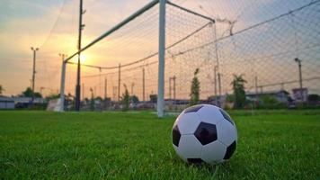 Soccer ball on the football field  background video