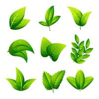 Leaves Icon Collection vector