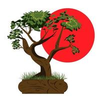 Bonsai tree. Japanese bonsai tree in the pot and with grass around. Plant icons isolated on white background. Asian plant with the sun in the background.  Vector