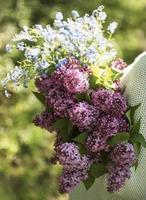 ramo de lilas en manos de mujer foto