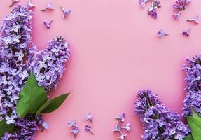 marco de ramas y flores de color lila foto