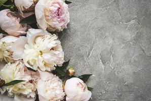 flores de peonía sobre un fondo de hormigón foto