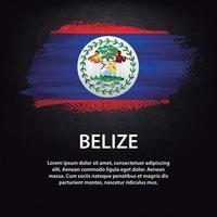Belize flag brush vector