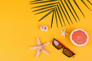 Beach accessories with shells and sea stars on a colored background photo