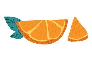 Hand drawn slice of orange with modern leaves. Summer concept. vector