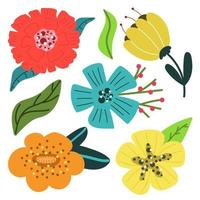 Set of bright modern flowers with leaves. Flat illustration. vector