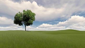 ein Baum oder bewölkter Himmel und grünes Gras video