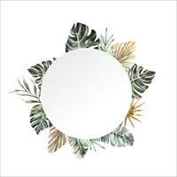 tropical frame 6 vector