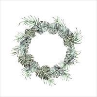 Circle watercolor tropical leaves vector