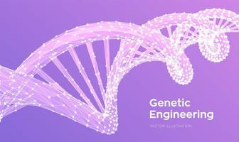 DNA sequence. Abstract 3d polygonal wireframe DNA molecules structure vector