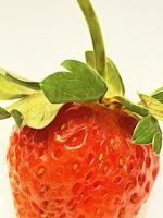 Cerrar fresa aislado sobre fondo blanco. foto