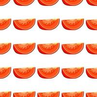 Illustration on theme of pattern red tomato vector