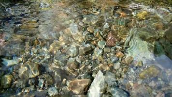 Close up of clean water flowing in a small mountain river, slow motion and shallow depth of field. video