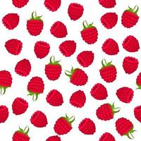 Theme big colored seamless red raspberry vector