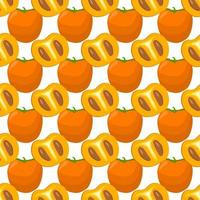 Illustration on theme big colored seamless persimmon vector