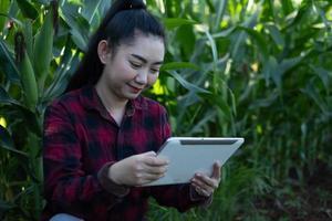 Joven agricultor use tableta observando algunos gráficos de maíz en el jardín foto