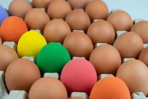 Eggs carton with chicken colorful easter egg lined up in rows at white background photo