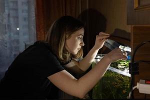 Young teen girl feeds fish in home aquarium photo