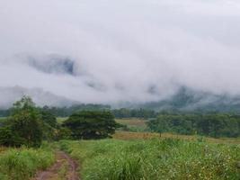 hermoso paisaje de niebla en las montañas foto