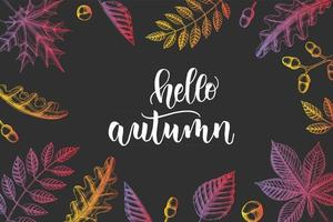 Autumn lettering - Hello Autumn with hand drawn leaves vector