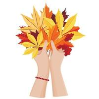 Women's hands hold a bouquet of autumn leaves. Seasonal illustration. vector