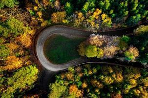 Carretera en zigzag, enmarcada por un bosque otoñal anaranjado foto