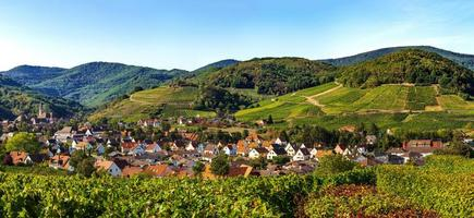 Panoramic view of Andlau in Alsace, France photo