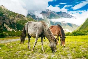 Beautiful Asian landscape photo