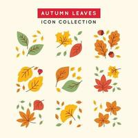 Colorful Tropical Falling Autumn Leaves vector