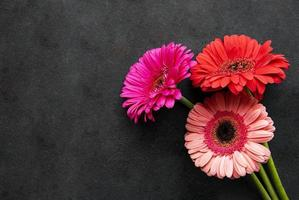 Flores de gerbera brillante sobre un fondo negro foto