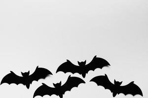 marco de vista superior con espacio de copia de murciélagos. concepto de foto hermosa de alta calidad