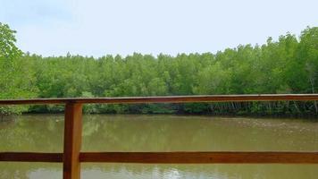 voyagez dans l'écosystème en rafting traditionnel en bambou à travers les mangroves luxuriantes pittoresques dans l'une des voies navigables de la rivière jaune de la thaïlande. c'est une aventure en plein air dans un environnement tropical de canaux et de bois. video