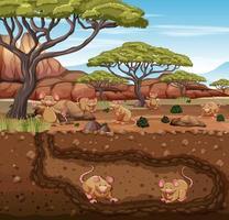 Underground animal burrow with rat family vector