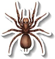 A sticker template with top view of a spider isolated vector
