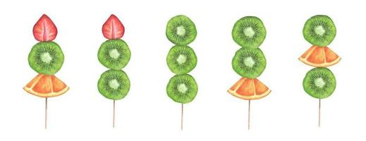 Slices of strawberry, kiwi and orange on a wooden stick. vector
