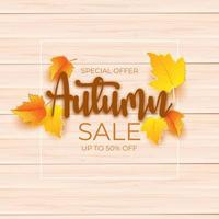 autumn sale promotion design with leaves over wooden board vector